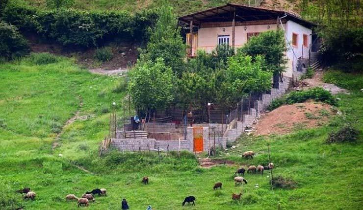 روستا زیارت